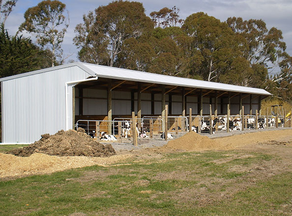 Calf Rearing Sheds Turton Farm Supplies